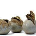 David Clifton art - Seed pod trio
